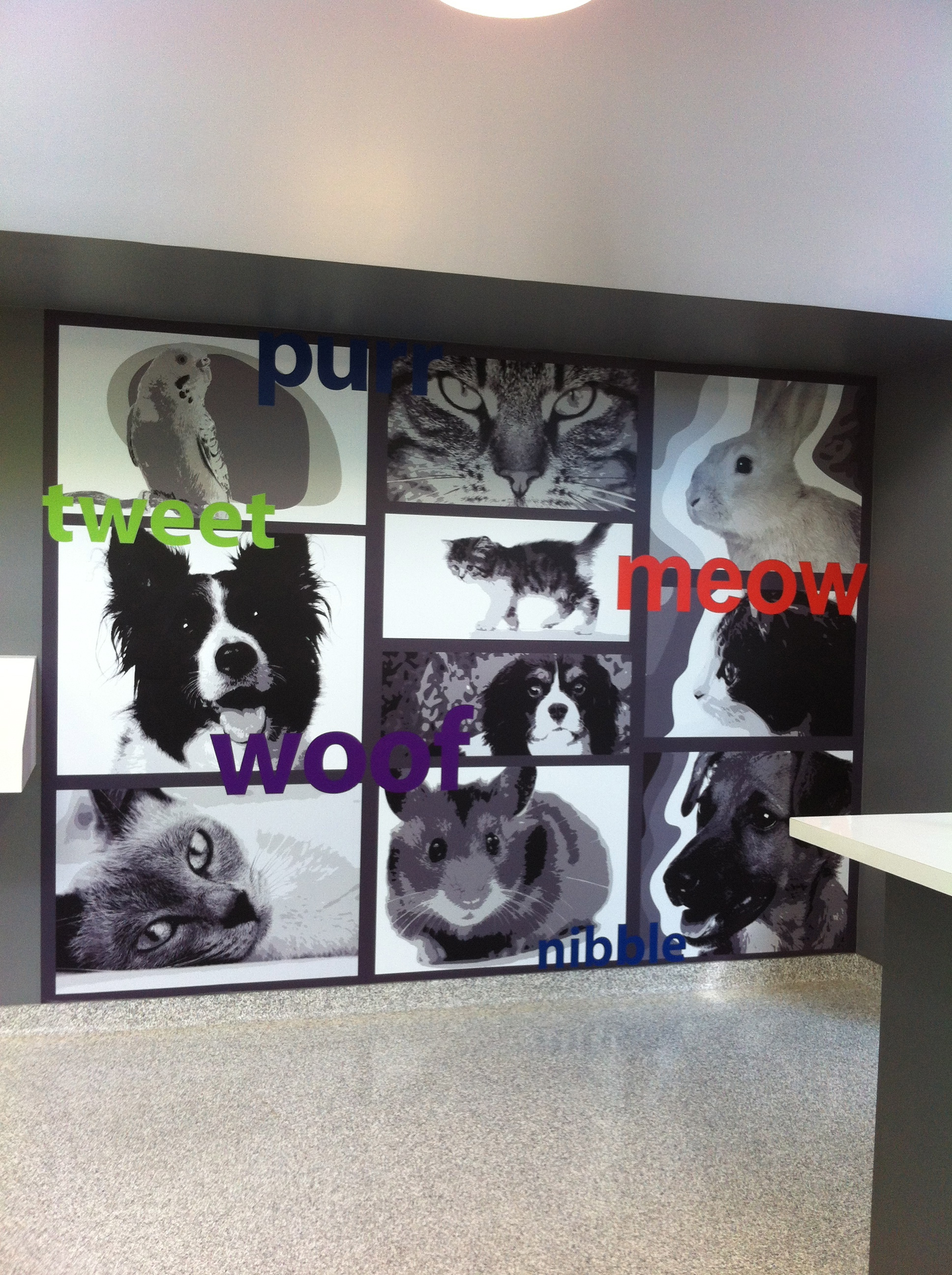 My Visit with the Ontario SPCA