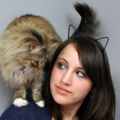 Cat Awareness Month – BC SPCA
