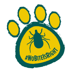 Keeping Your Pets Safe from Fleas and Ticks – #NoBiteIsRight