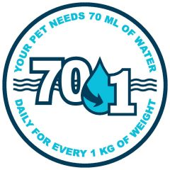 Hydrate for Health – Importance of Pet Hydration