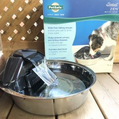 Staying Hydrated with PetSafe's Drinkwell Zen Pet Fountain