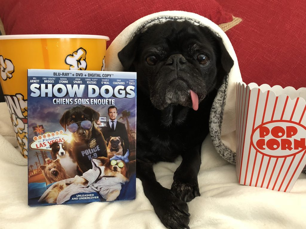 Show Dogs Movie - Giveaway #ad