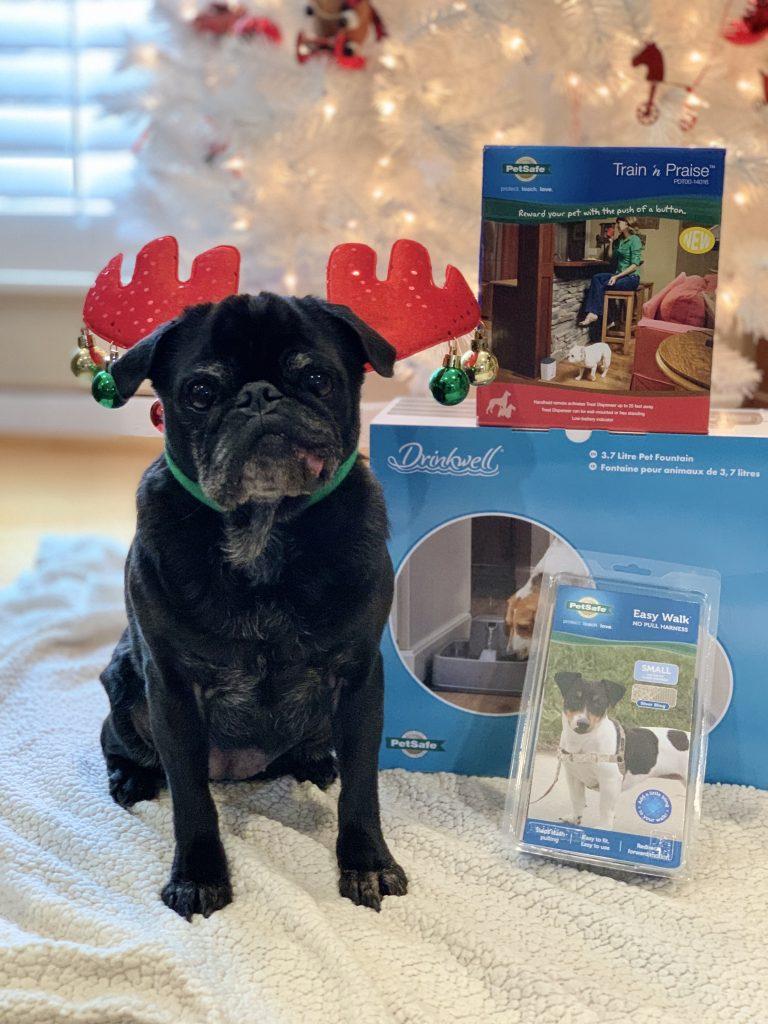 PetSafe Canada's Howliday Dog Prize Bundle Giveawway #ad