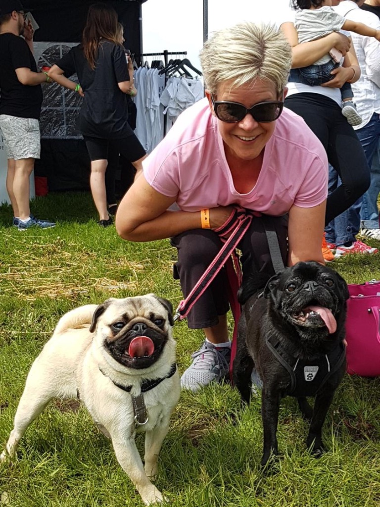 Edie the Pug's 11th Barkday Giveaway!